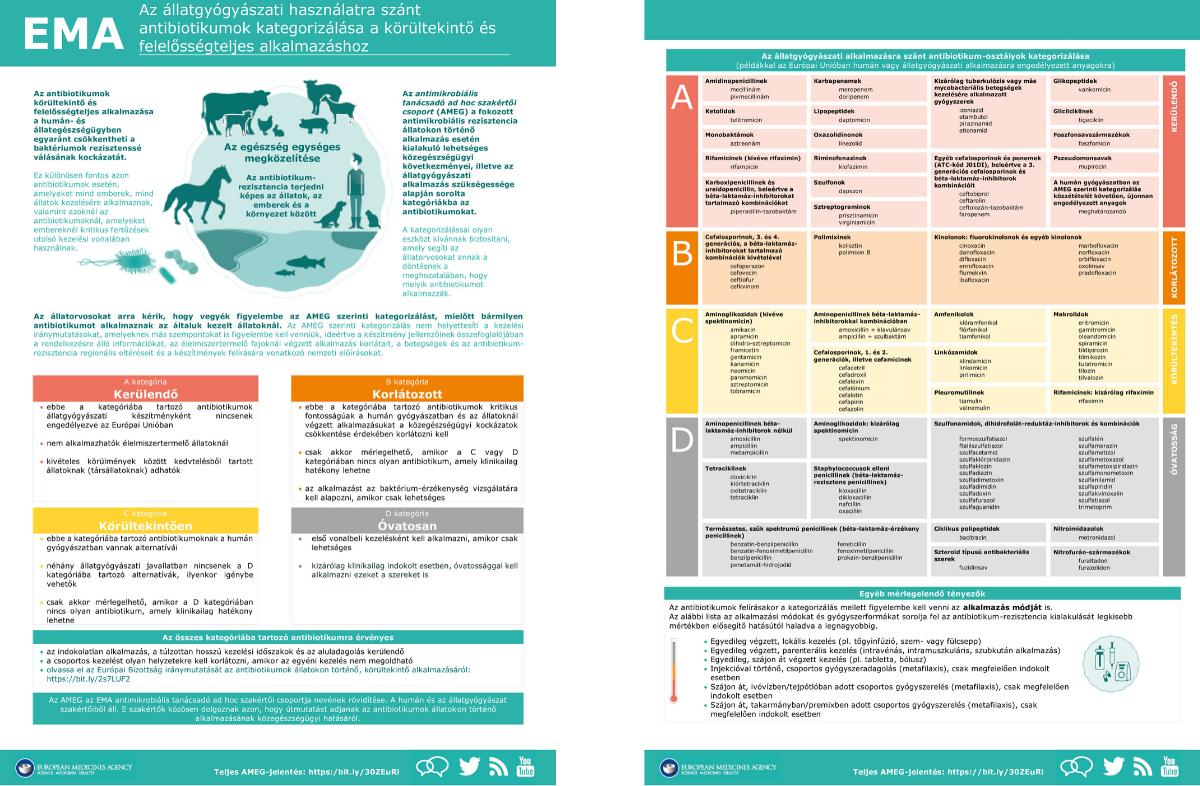 Élelmiszereink és az antimikrobiális rezisztencia